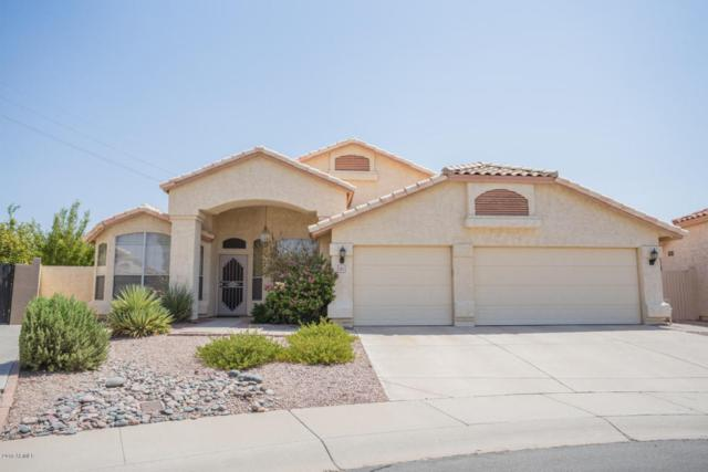 1021 S Brentwood Court, Chandler, AZ 85286 (MLS #5805973) :: The Bill and Cindy Flowers Team