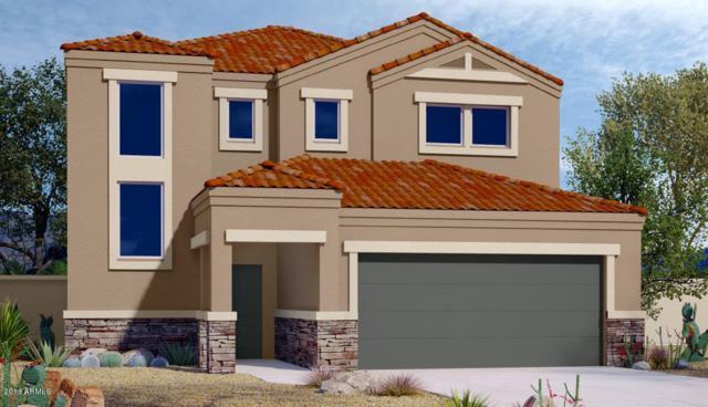 2310 E Alida Trail, Casa Grande, AZ 85194 (MLS #5806024) :: Lux Home Group at  Keller Williams Realty Phoenix