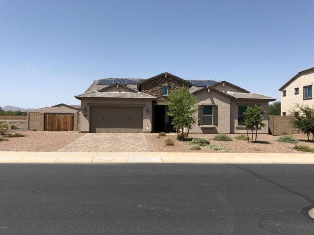 18240 W Monterosa Street, Goodyear, AZ 85395 (MLS #5806062) :: Occasio Realty