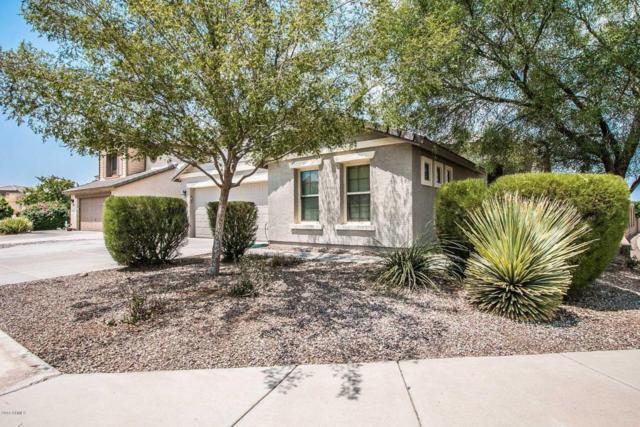 2460 W Colt Court, Queen Creek, AZ 85142 (MLS #5806093) :: Yost Realty Group at RE/MAX Casa Grande
