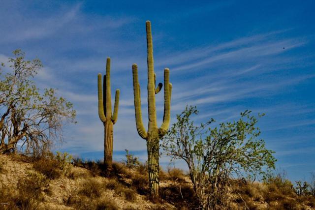 00000 N Laurel Lane, Fort McDowell, AZ 85264 (MLS #5806094) :: Phoenix Property Group
