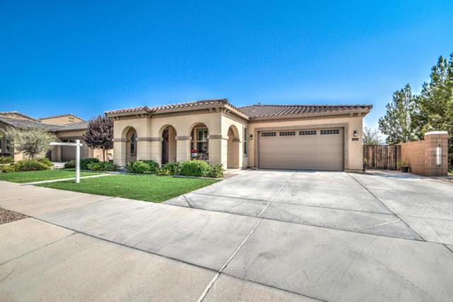 20839 E Misty Lane, Queen Creek, AZ 85142 (MLS #5806118) :: The Bill and Cindy Flowers Team