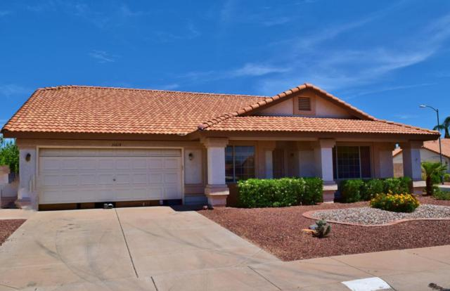 20618 N 110TH Avenue, Sun City, AZ 85373 (MLS #5806123) :: Occasio Realty