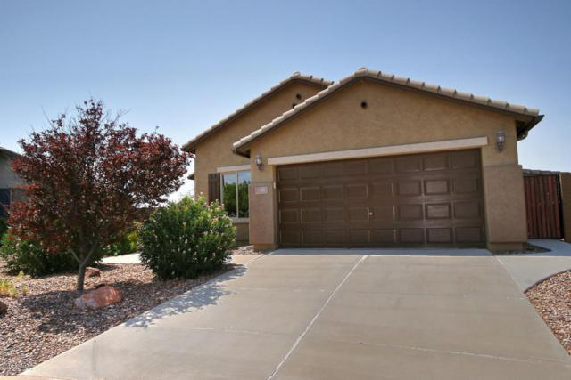 3082 N Daisy Drive, Florence, AZ 85132 (MLS #5806132) :: Yost Realty Group at RE/MAX Casa Grande