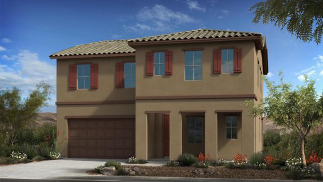 211 E Brinley Drive, Tempe, AZ 85281 (MLS #5806157) :: Occasio Realty