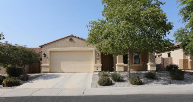 23774 W Harrison Drive, Buckeye, AZ 85326 (MLS #5806228) :: Occasio Realty