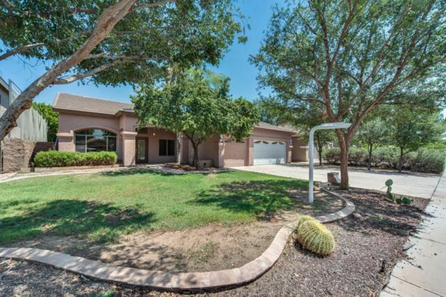 1069 S Western Skies Drive, Gilbert, AZ 85296 (MLS #5806241) :: The Bill and Cindy Flowers Team