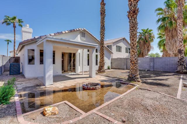 867 E Morelos Street, Chandler, AZ 85225 (MLS #5806257) :: Occasio Realty