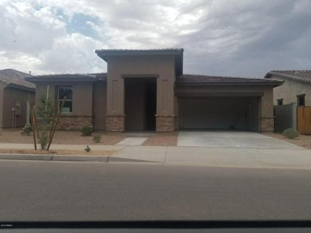 22479 E Silver Creek Lane, Queen Creek, AZ 85142 (MLS #5806261) :: The Pete Dijkstra Team