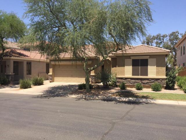 1836 W Orchid Lane, Chandler, AZ 85224 (MLS #5806300) :: Occasio Realty