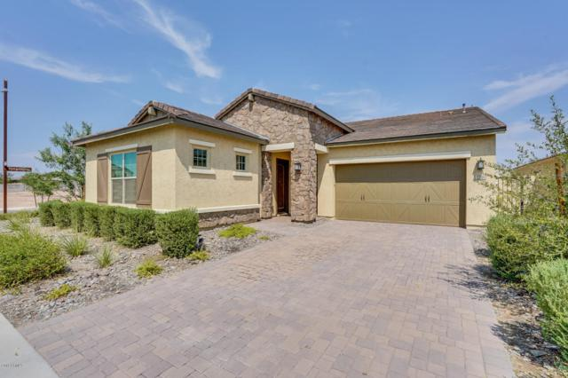 5301 S Olivine, Mesa, AZ 85212 (MLS #5806321) :: The Wehner Group