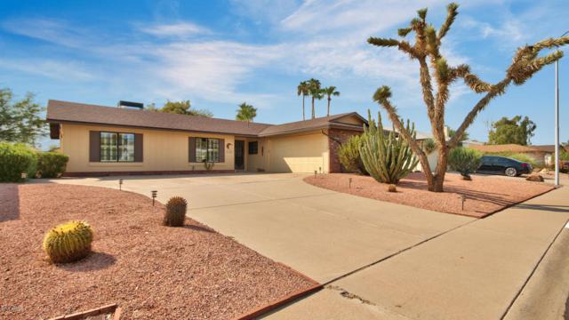 11660 S Half Moon Drive, Phoenix, AZ 85044 (MLS #5806362) :: Power Realty Group Model Home Center