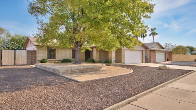 1125 W Portobello Avenue, Mesa, AZ 85210 (MLS #5806366) :: The Bill and Cindy Flowers Team