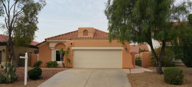 14125 W Greenview Circle N, Litchfield Park, AZ 85340 (MLS #5806374) :: Phoenix Property Group