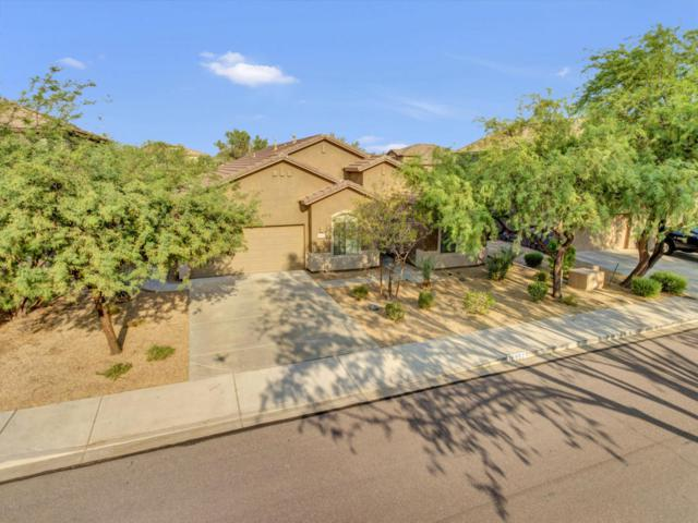 26857 N 83RD Drive, Peoria, AZ 85383 (MLS #5806381) :: Power Realty Group Model Home Center