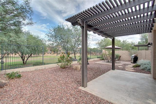 2410 W Jake Haven, Phoenix, AZ 85085 (MLS #5806397) :: The Daniel Montez Real Estate Group