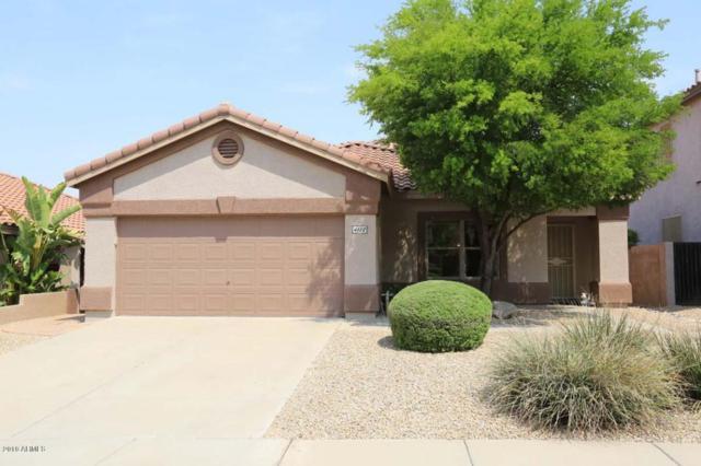 4112 E Tether Trail, Phoenix, AZ 85050 (MLS #5806426) :: Occasio Realty