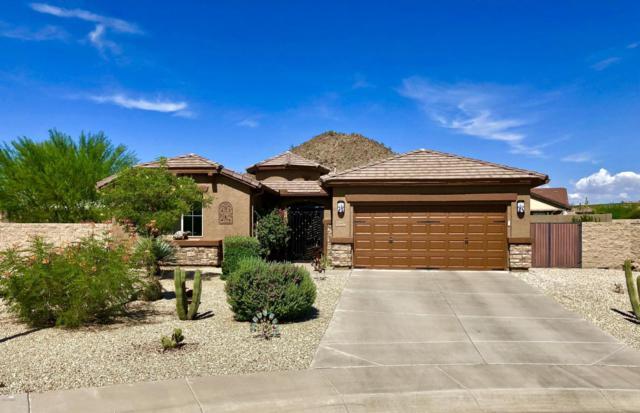31437 N Desert Star Street, San Tan Valley, AZ 85143 (MLS #5806447) :: The Pete Dijkstra Team