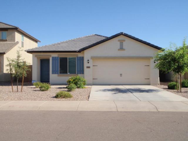 10365 E Primrose Lane, Florence, AZ 85132 (MLS #5806449) :: The Bill and Cindy Flowers Team