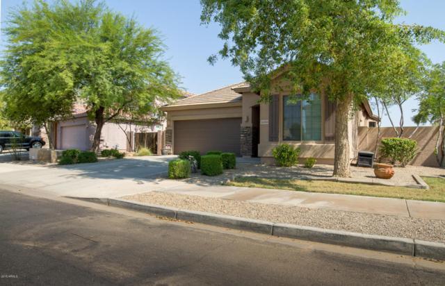 15268 W Roanoke Avenue, Goodyear, AZ 85395 (MLS #5806465) :: Occasio Realty
