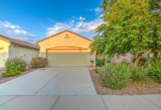 2389 N Pecos Drive, Florence, AZ 85132 (MLS #5806507) :: My Home Group