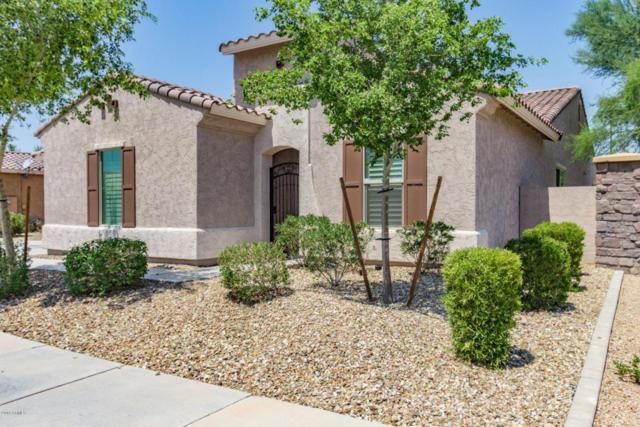 15850 W Berkeley Road, Goodyear, AZ 85395 (MLS #5806538) :: Occasio Realty
