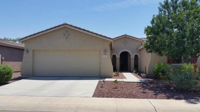 43001 W Morning Dove Lane, Maricopa, AZ 85138 (MLS #5806544) :: The Pete Dijkstra Team