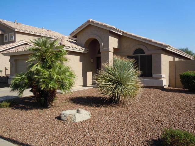 5123 E Charleston Avenue, Scottsdale, AZ 85254 (MLS #5806577) :: Occasio Realty