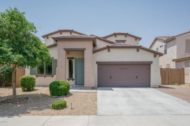 22812 N 123RD Drive, Sun City West, AZ 85375 (MLS #5806587) :: The Worth Group