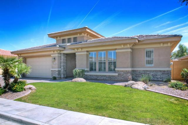 3847 E Beechnut Place, Chandler, AZ 85249 (MLS #5806639) :: Power Realty Group Model Home Center