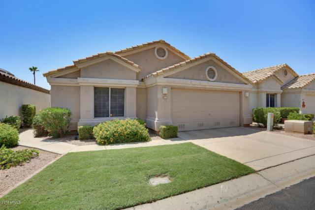 14529 W Winding Trail, Surprise, AZ 85374 (MLS #5806664) :: The Daniel Montez Real Estate Group