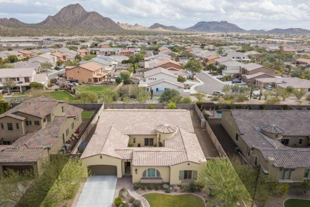 28407 N 67TH Drive, Peoria, AZ 85383 (MLS #5806671) :: Kepple Real Estate Group