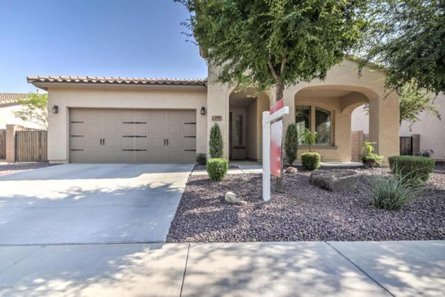 1975 E Mia Lane, Gilbert, AZ 85298 (MLS #5806712) :: The Pete Dijkstra Team