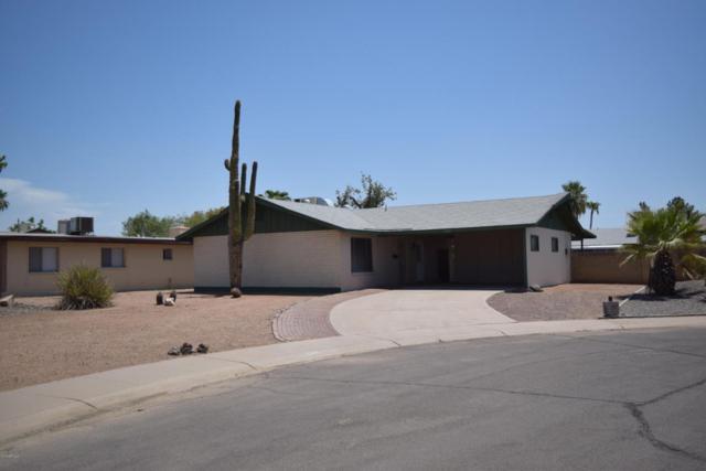 1321 E Verlea Drive, Tempe, AZ 85282 (MLS #5806727) :: Power Realty Group Model Home Center