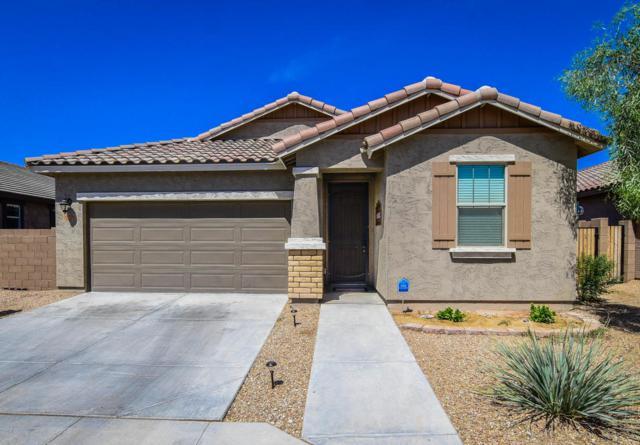 26316 N 121ST Lane, Peoria, AZ 85383 (MLS #5806750) :: Power Realty Group Model Home Center