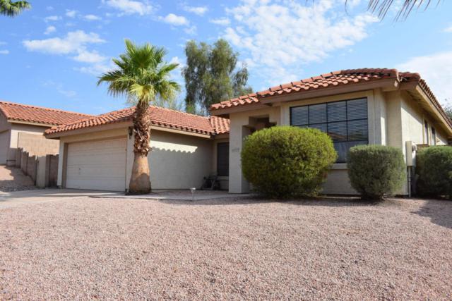 14059 S 39TH Street, Phoenix, AZ 85044 (MLS #5806755) :: Power Realty Group Model Home Center