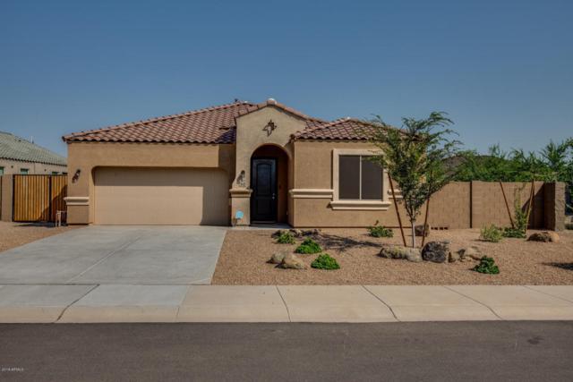 13422 W Desert Moon Way, Peoria, AZ 85383 (MLS #5806760) :: Power Realty Group Model Home Center