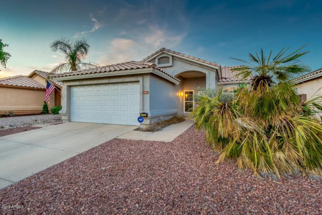 1082 W Orchid Lane, Chandler, AZ 85224 (MLS #5806776) :: Power Realty Group Model Home Center