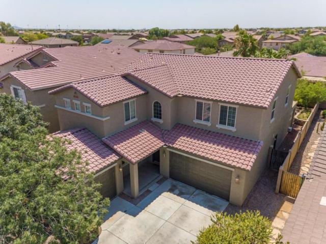 42543 W Avella Drive, Maricopa, AZ 85138 (MLS #5806796) :: The Pete Dijkstra Team