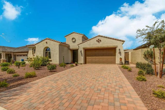 2724 N Black Rock Road, Buckeye, AZ 85396 (MLS #5806819) :: Phoenix Property Group
