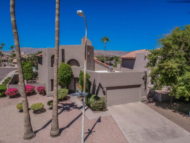 3732 E Tanglewood Drive, Phoenix, AZ 85048 (MLS #5806832) :: The Daniel Montez Real Estate Group