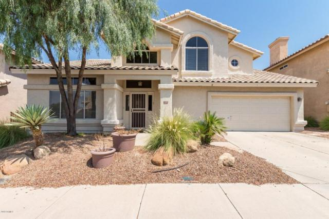 1220 E Wildwood Drive, Phoenix, AZ 85048 (MLS #5806835) :: Power Realty Group Model Home Center