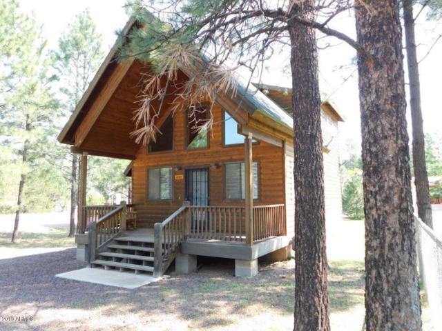 2867 Wahoo Road, Overgaard, AZ 85933 (MLS #5806845) :: The Daniel Montez Real Estate Group