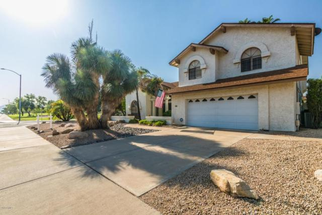 5321 E Paradise Lane, Scottsdale, AZ 85254 (MLS #5806850) :: The Pete Dijkstra Team