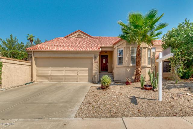 11238 E Mercer Lane, Scottsdale, AZ 85259 (MLS #5806862) :: The Pete Dijkstra Team
