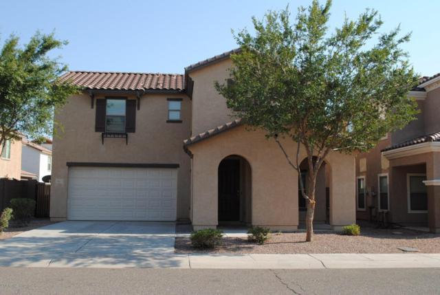 10917 W College Drive, Phoenix, AZ 85037 (MLS #5806870) :: The Pete Dijkstra Team