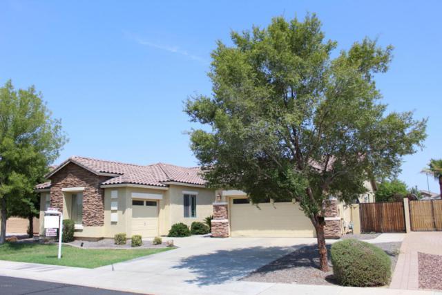 5047 S Opal Place, Chandler, AZ 85249 (MLS #5806873) :: Phoenix Property Group