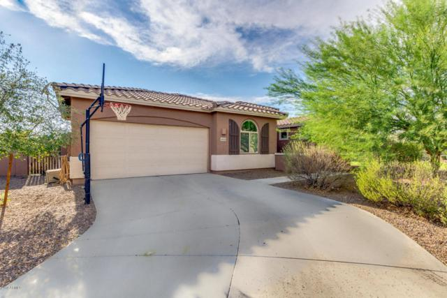 6828 N 87TH Lane, Glendale, AZ 85305 (MLS #5806900) :: The Everest Team at My Home Group