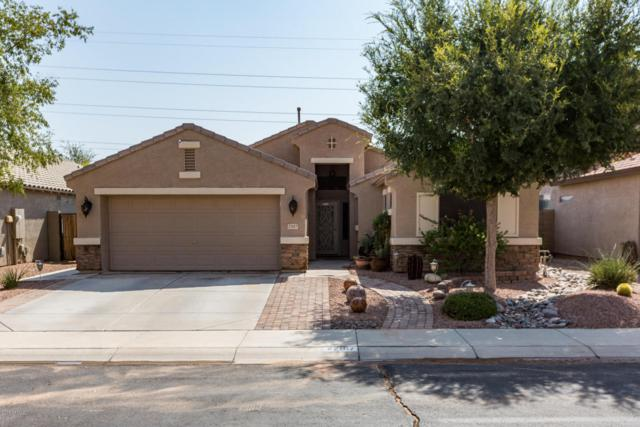 22107 N Dietz Drive, Maricopa, AZ 85138 (MLS #5806917) :: Occasio Realty