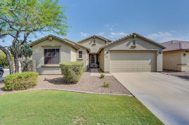 774 W Desert Hills Drive, San Tan Valley, AZ 85143 (MLS #5806938) :: The Kenny Klaus Team